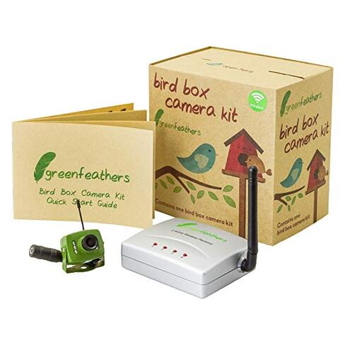 Garden bird box camera gadget