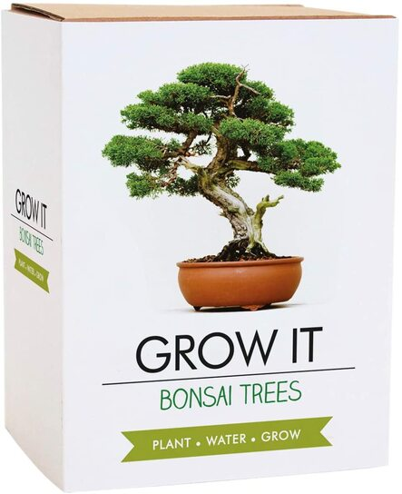 Bonsai gardening gift set