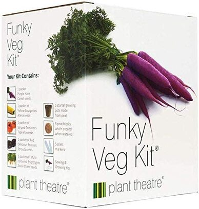 unusual vegetable growing gift box
