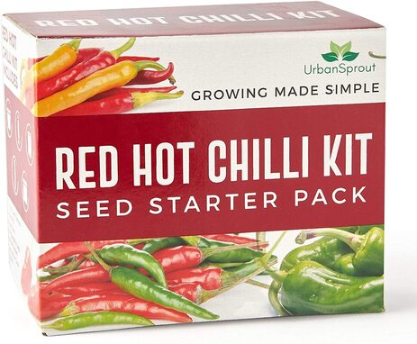 Grow your own hot chilli kit